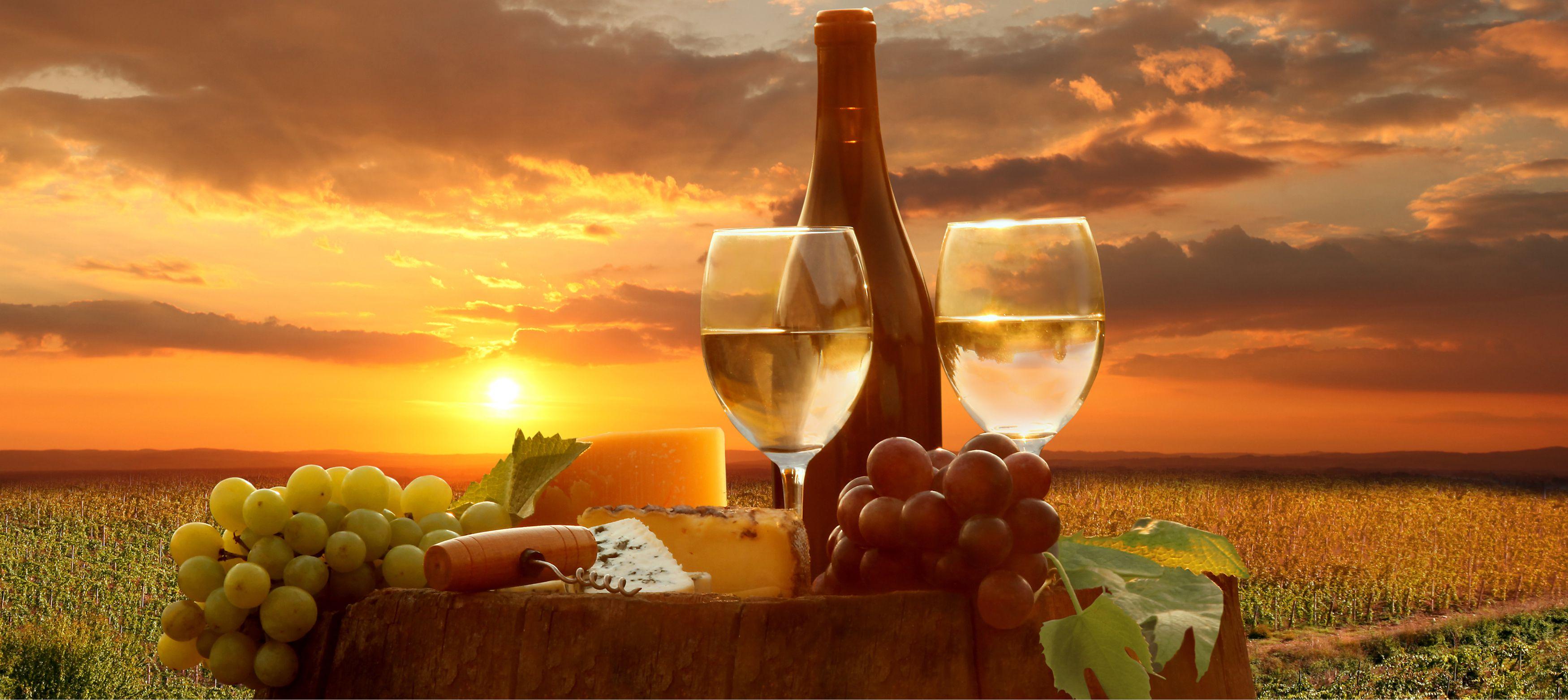 vindruvor, vitt vin och delikatess ostar i solnedgången i toscana