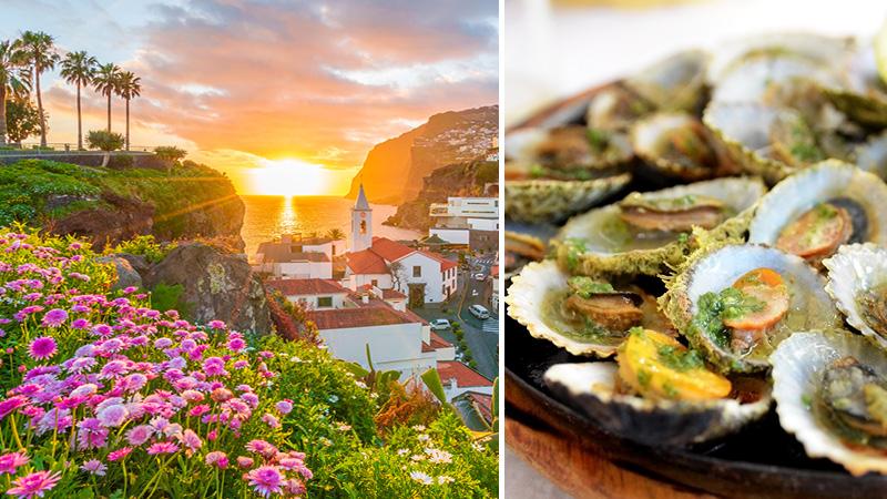 Komplett guide till Madeira