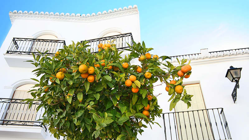 Andalusiens säsonger