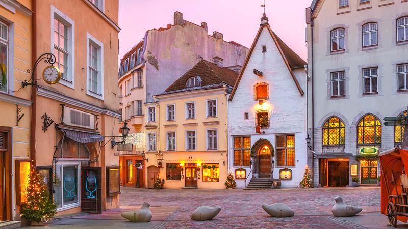 Medeltida och färgglada hus i Tallins gamla stadsdel i vintertider. Julresa till Tallinn.