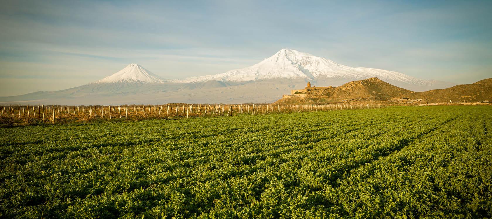 gröna fält och snöbeklädda berg på en rundresa genom georgien och armenien