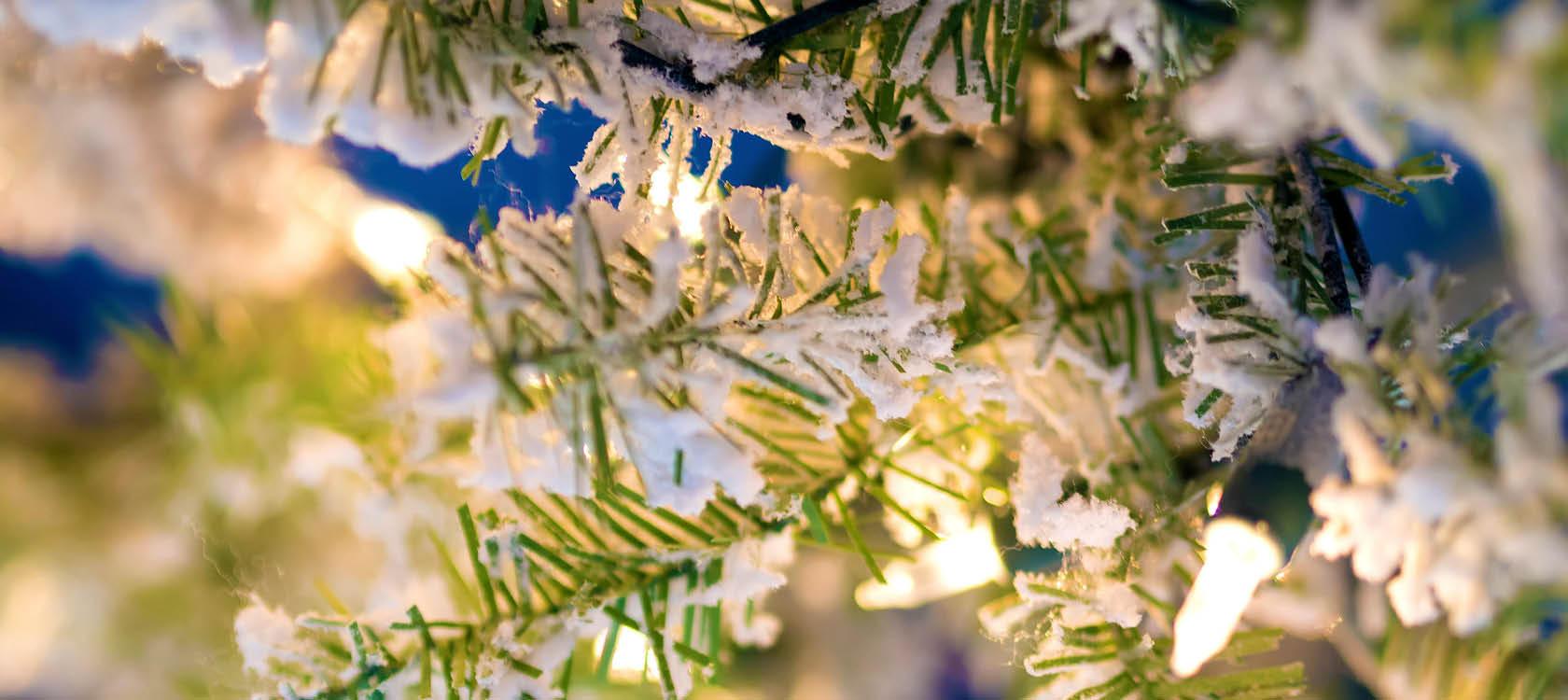 snö och julstämning på julmarknad