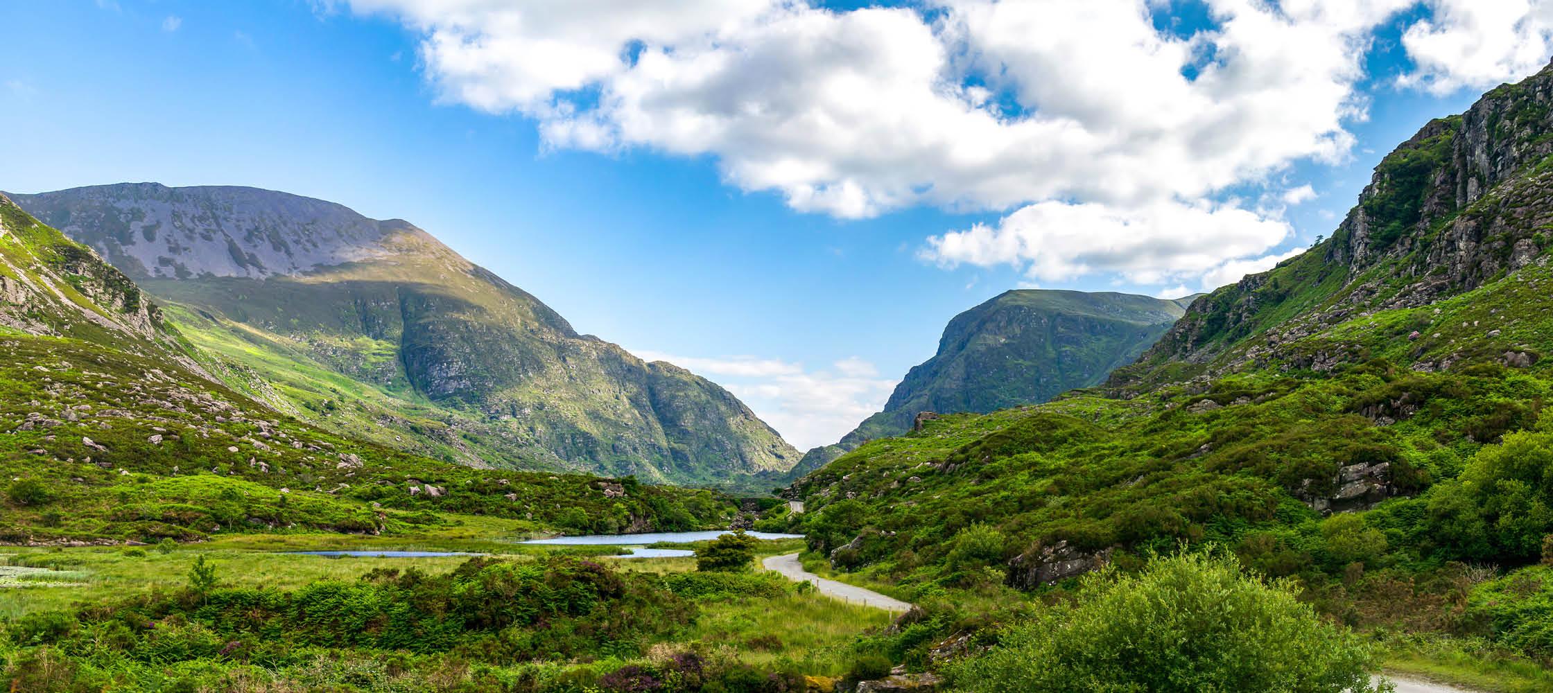 det gröna irland med ängar, får, sjöar och berg på en rundresa