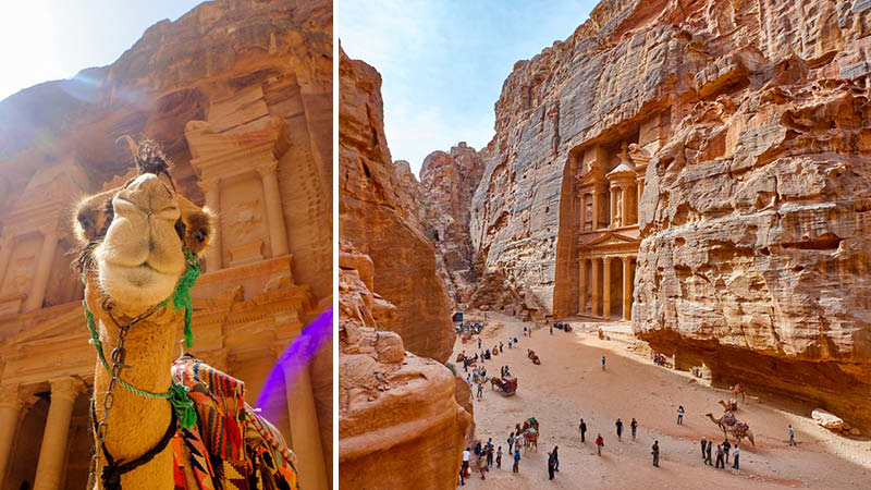 Kameler och resenärer i den arkeologiska staden Petra i Jordanien.