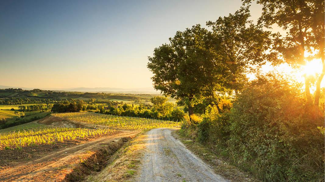 Öde landsväg omgiven av vackert landskap i Umbrien, Italien