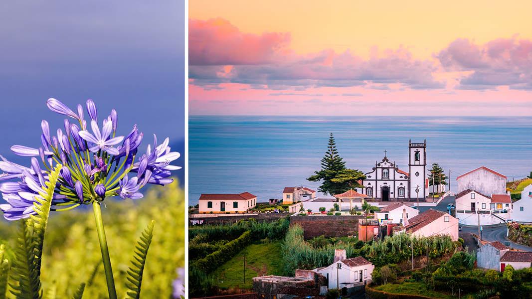 Skymning över hustaken i Sao Miguel i Azorerna, Portugal.