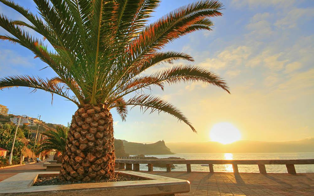 Långtidssemester på Madeira
