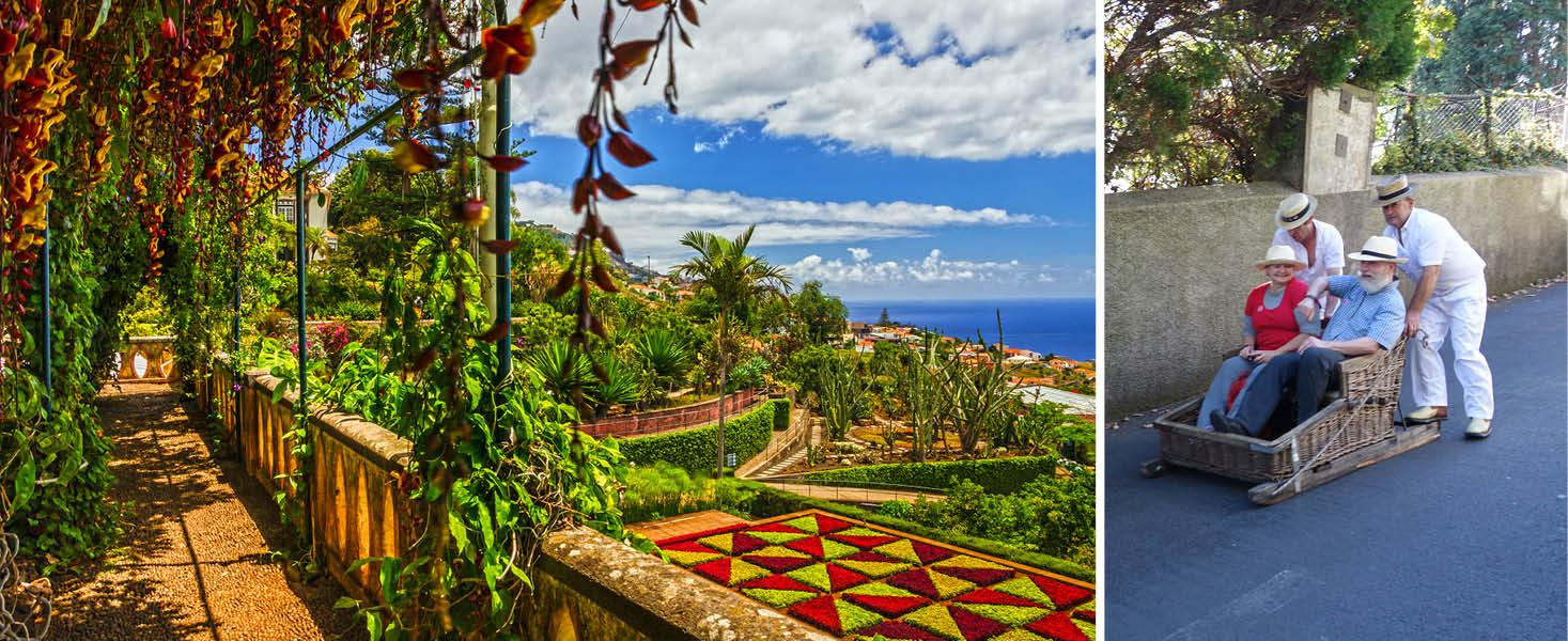 Botanisk trädgård och utflykt till Monte på Madeira