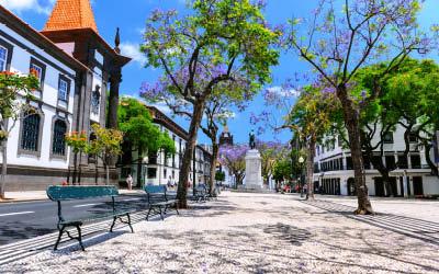 Madeira till makalöst pris