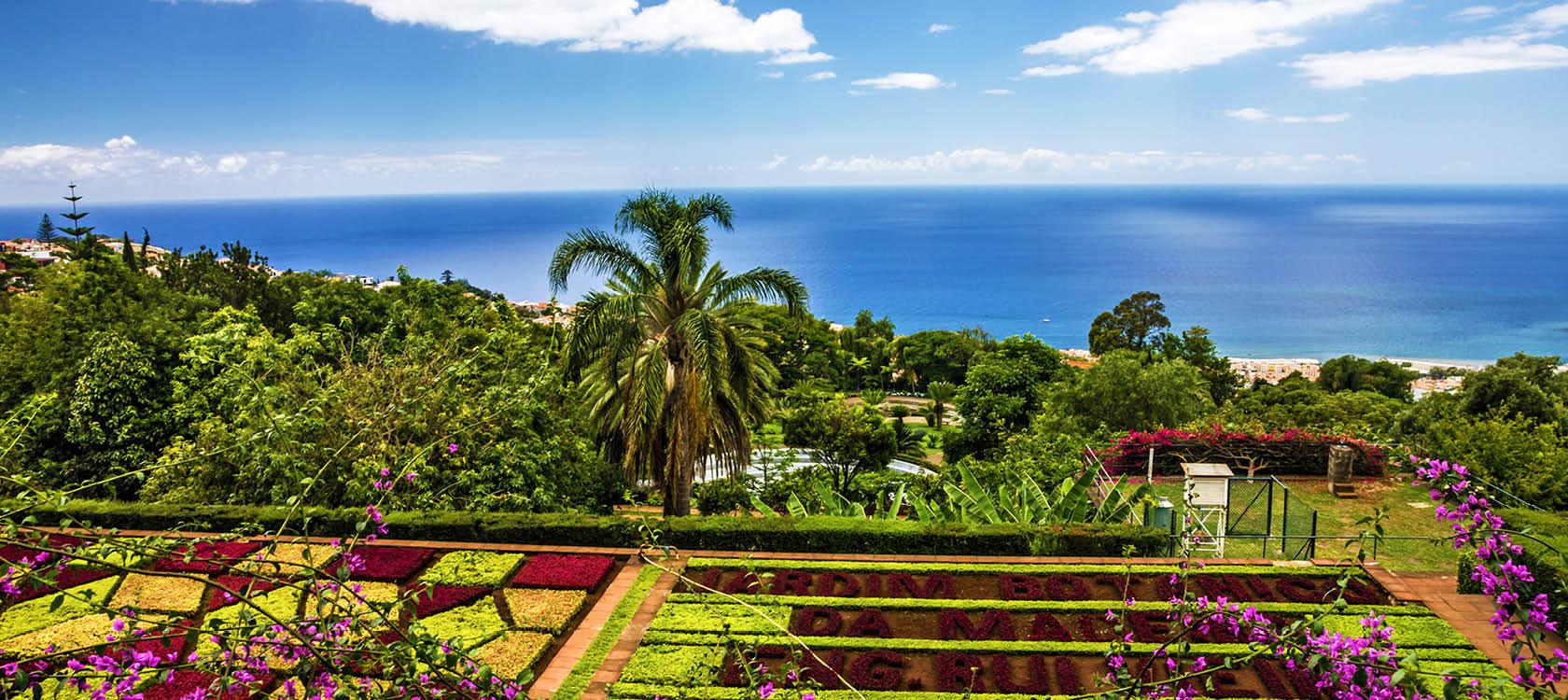 botanisk trädgård med blommor och växter på madeira