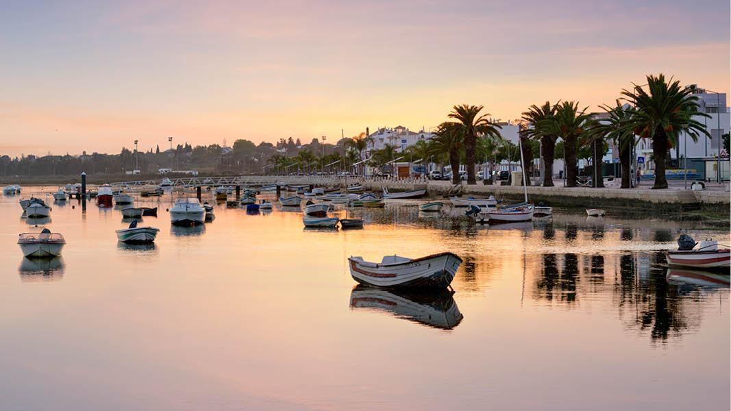 hamn med båtar och palmer i kvällsskrud på resa i tavira