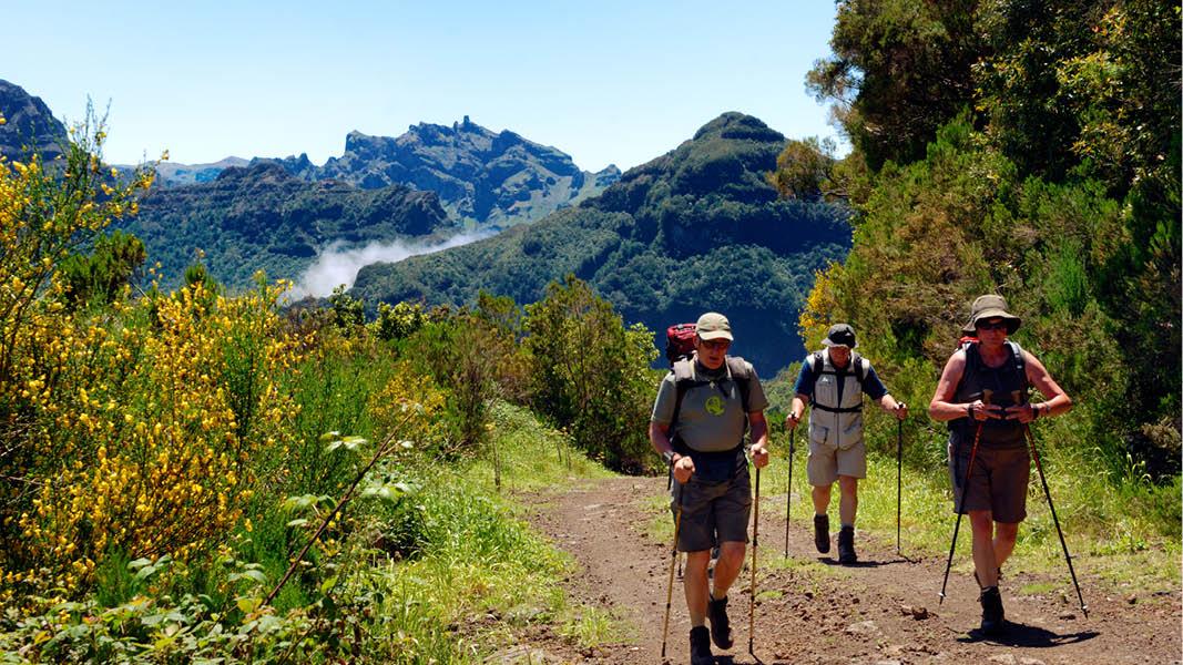 vandra bland gröna berg och vattenfall på ön madeira