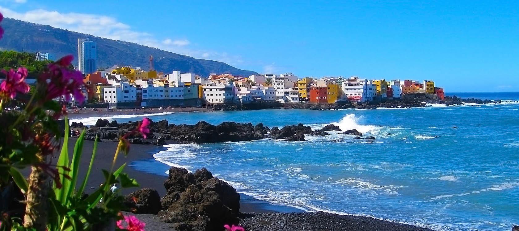 rosa blommor och vågor vid stranden på teneriffa